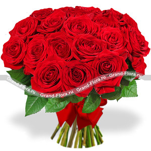 17 roses (70 cm) - a bouquet of red roses
